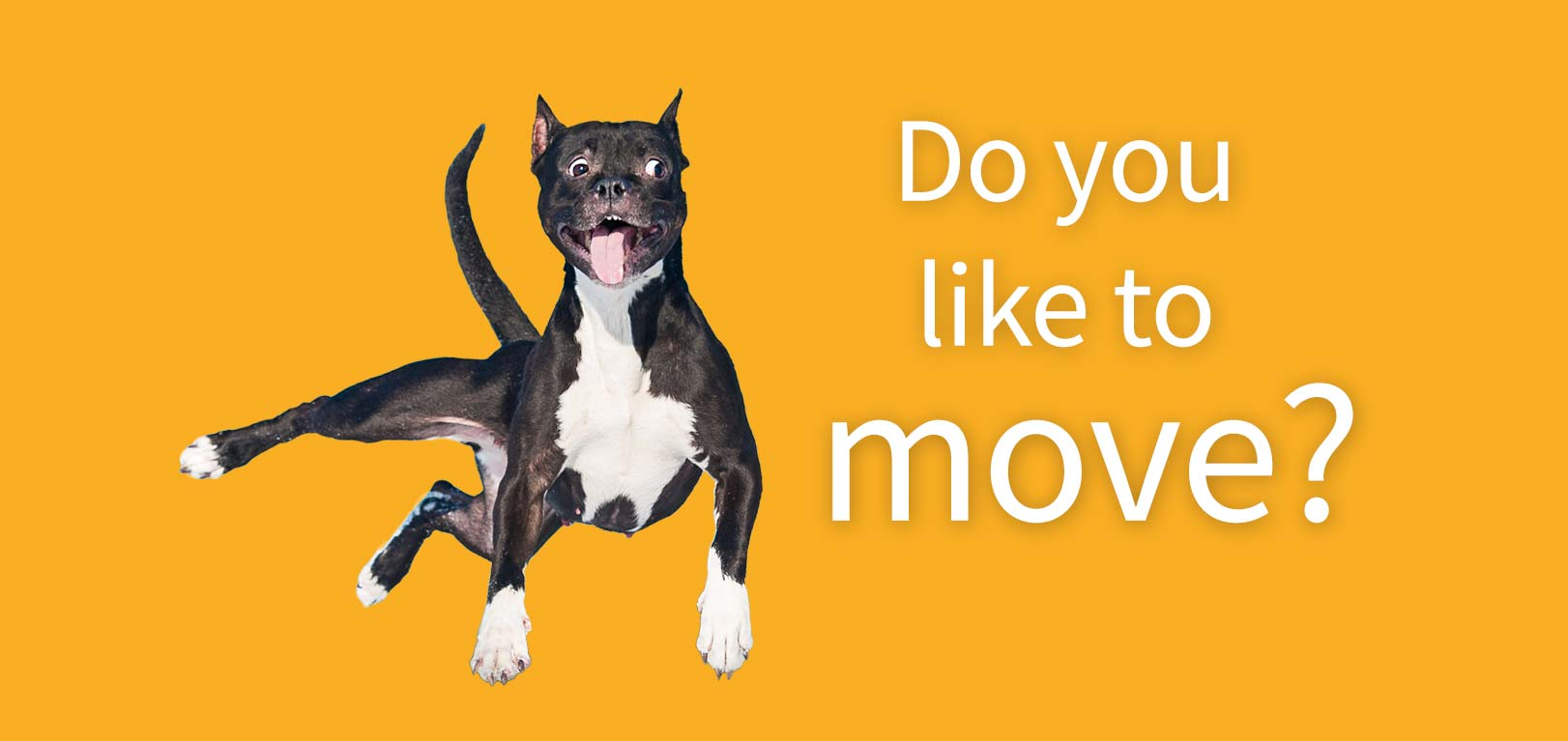 Do you Like to move it?